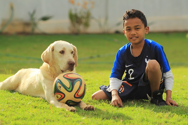 A boy and his dog played soccer