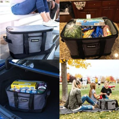 Best Soft Sided Coolers - CleverMade Cooler Photos